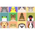 動物ポストカードがかわいい!動物のご当地フォルムカード5選