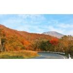 日光の紅葉を見に行こう!日光東照宮や神橋など絶景紅葉スポット